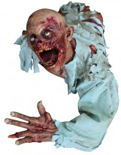 Decorazione zombie halloween