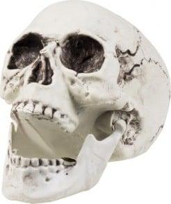 Decorazione di Halloween: teschio