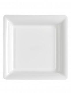 12 piatti bianchi quadrati