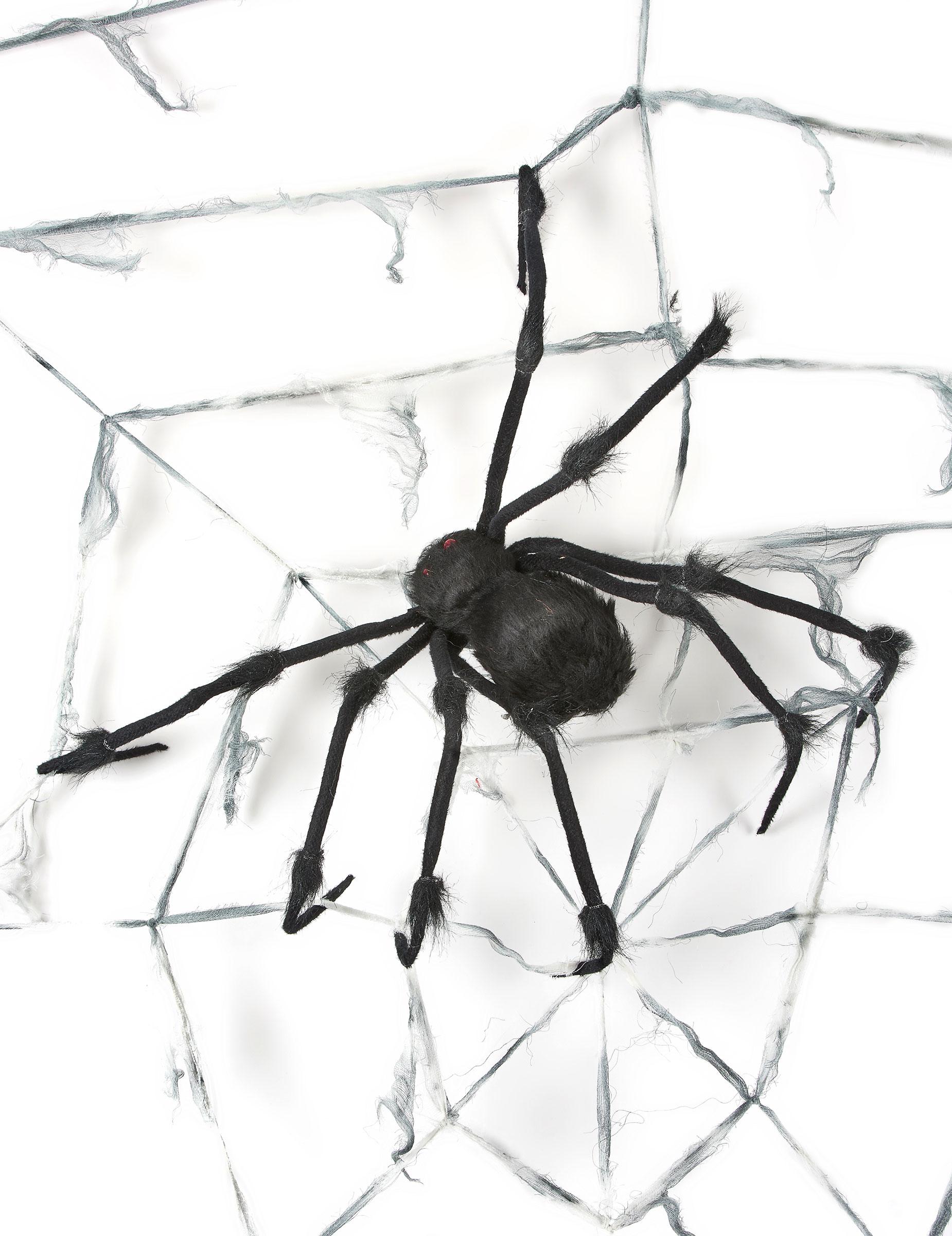 Decorazione Di Halloween Ragnatela Gigante Con Ragno