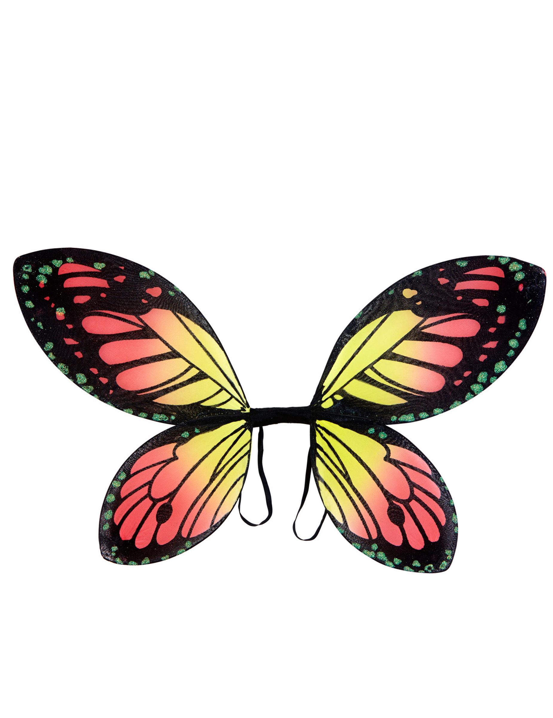 Ali di farfalla colorate ragazza accessori e vestiti di for Foto farfalle colorate