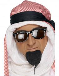 Barbetta da Principe Arabo