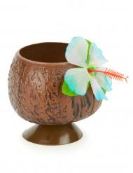Coppa Hawaii noce di cocco