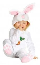 Costume coniglio bebe