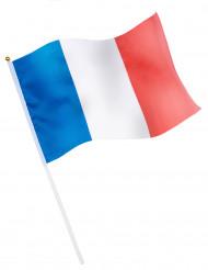 Bandiera da tifoso Francia