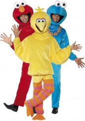 Costume trio Sesame Street™