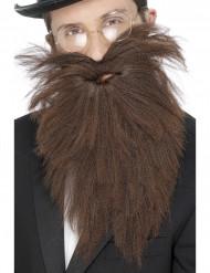 Lunga barba bruna uomo