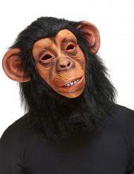 Maschera da scimmia adulti