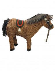 Pentolaccia Cavallo