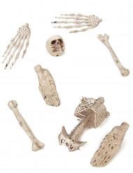 Confezione di ossa decorative