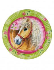 8 Piatti Cavalli
