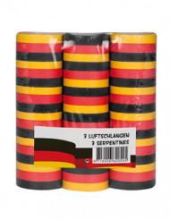 Stelle filanti tifosi Germania