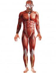 Costume anatomia umana adulto Halloween