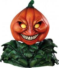 Maschera zucca halloween adulto