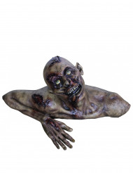 Decorazione busto zombie Halloween