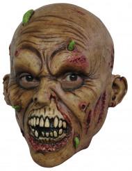 Maschera zombie adulti Halloween