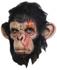 Maschera scimmia infetta adulto Halloween