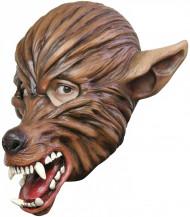 Maschera lupo marrone adulto Halloween