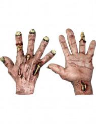 Guanti zombie adulto Halloween