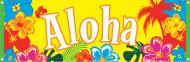 Banner Aloha Hawaii
