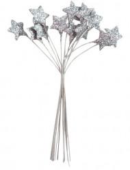Bouquet 12 stelle argentate