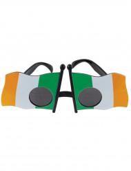 Occhiali a bandiera irlandese