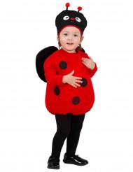 Costume baby coccinella bambina