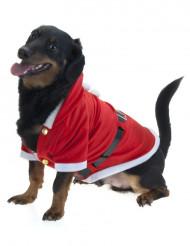 Giacca da babbo Natale per cane