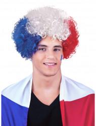 Parrucca Afro/clown Francia