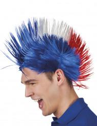 Parrucca punk Francia