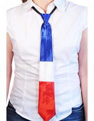 Cravatta Francia