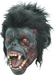 Maschera scimpanzé zombie adulto Halloween