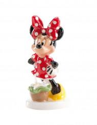 Candela Minnie™