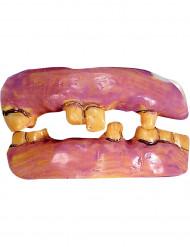 Dentiera denti vecchi