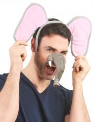 Naso morbido elefante