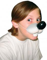 Naso morbido topolino