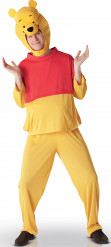 Costume Winnie the pooh