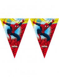 Ghirlanda Spiderman™