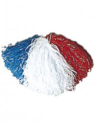 Pompon Tifoso Francia