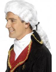 Parrucca bianca barocca adulto