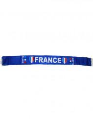 Sciarpa Francia