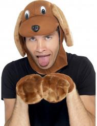 Kit travestimento cane adulto