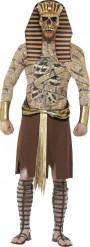 Costume faraone zombie Halloween