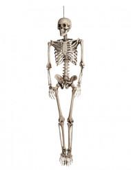 Decorazione da appendere scheletro Halloween