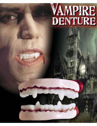 Dentiera da Vampiro adulto Halloween
