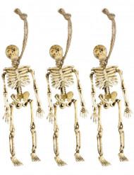 Decorazione da appendere scheletri Halloween