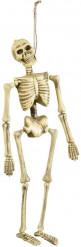 Finto scheletro impiccato Halloween