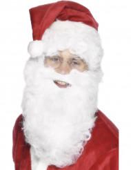 Barba bianca adulto Natale