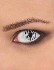 Lenti a contatto zebrate per adulto