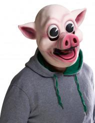 Maschera maiale